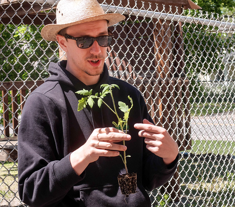 Nathaniel Mich of Foodlink explains how to plant a tomato plant during program at the Cathedral Community Garden program on May 20 in Rochester. The program in in its fourth year and is working towards having people grow their own food. Courier Photo by John Haeger